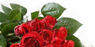 Подарки любимой: Сколько роз надо дарить девушке?