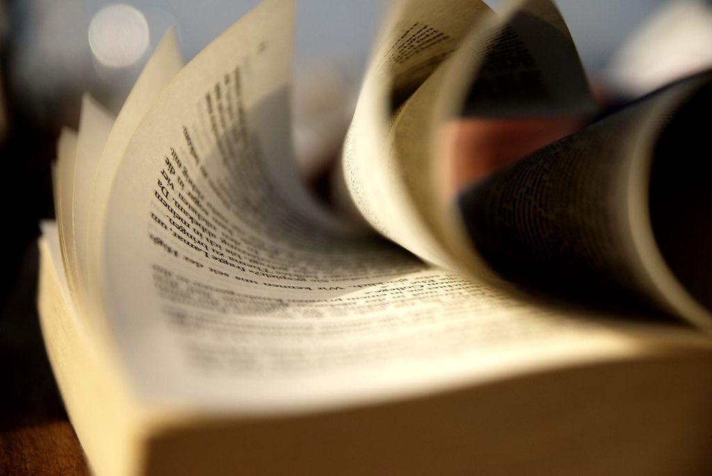 Книга - верный спутник жизни
