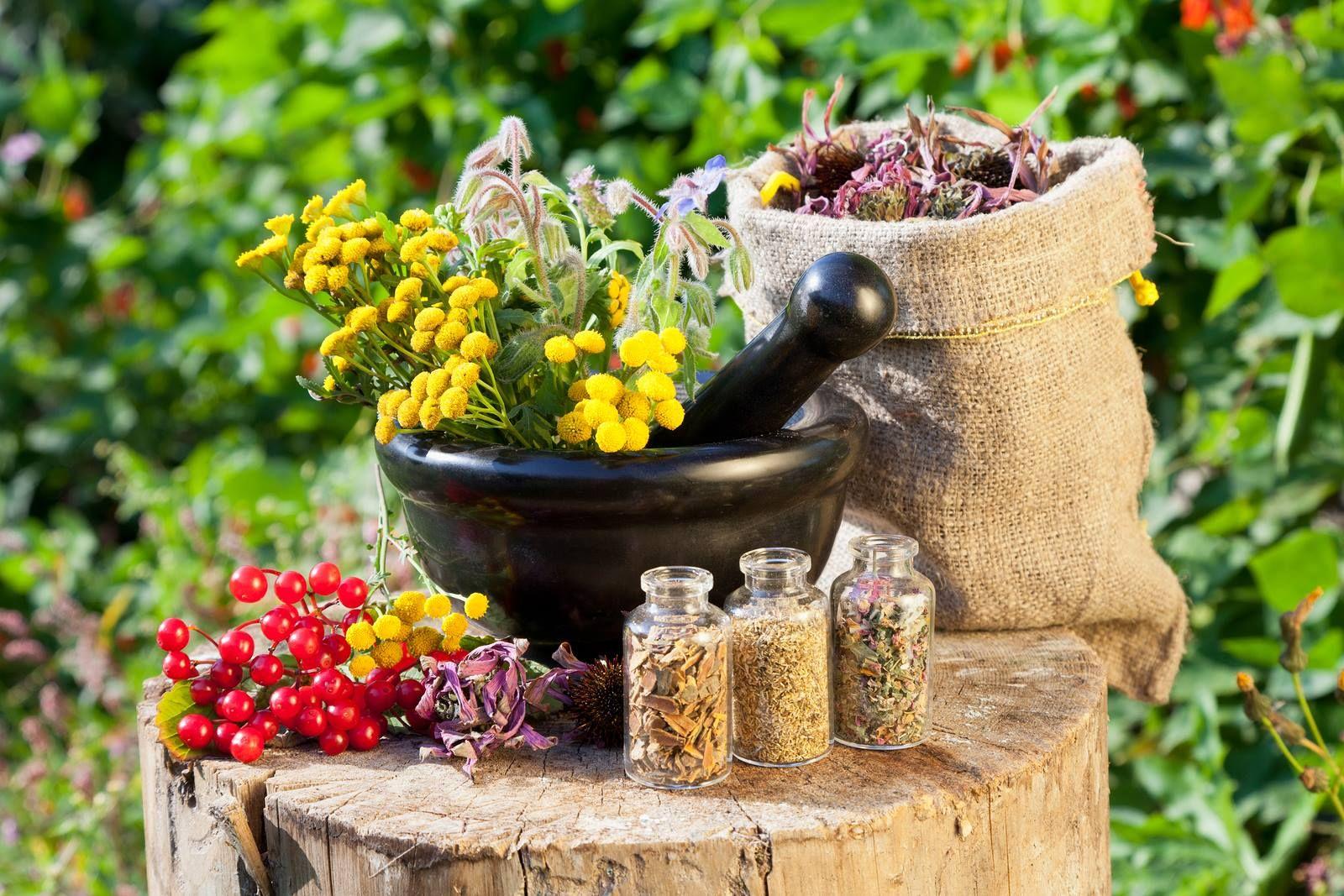 Травяные отвары, настои и ванны от бессонницы