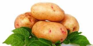 Картофельная диета для похудения на 5 или 7 дней