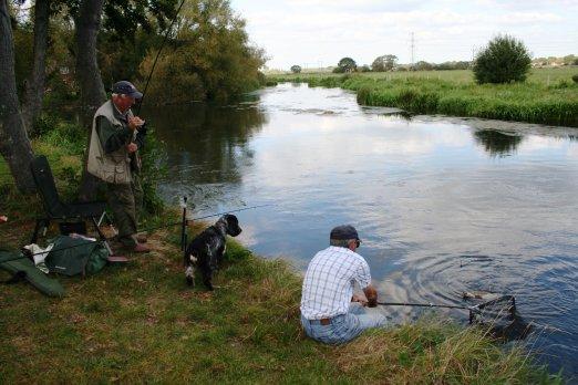 Дачная рыбалка: советы и рекомендации