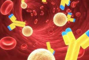иммуноглабулин